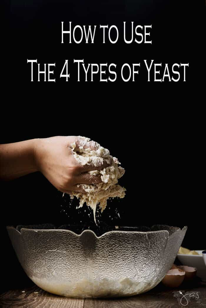 How to use four types of yeast