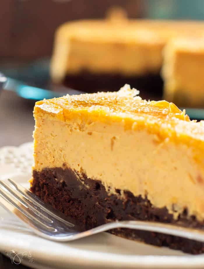 slice of brownie pumpkin creme brulee cheesecake