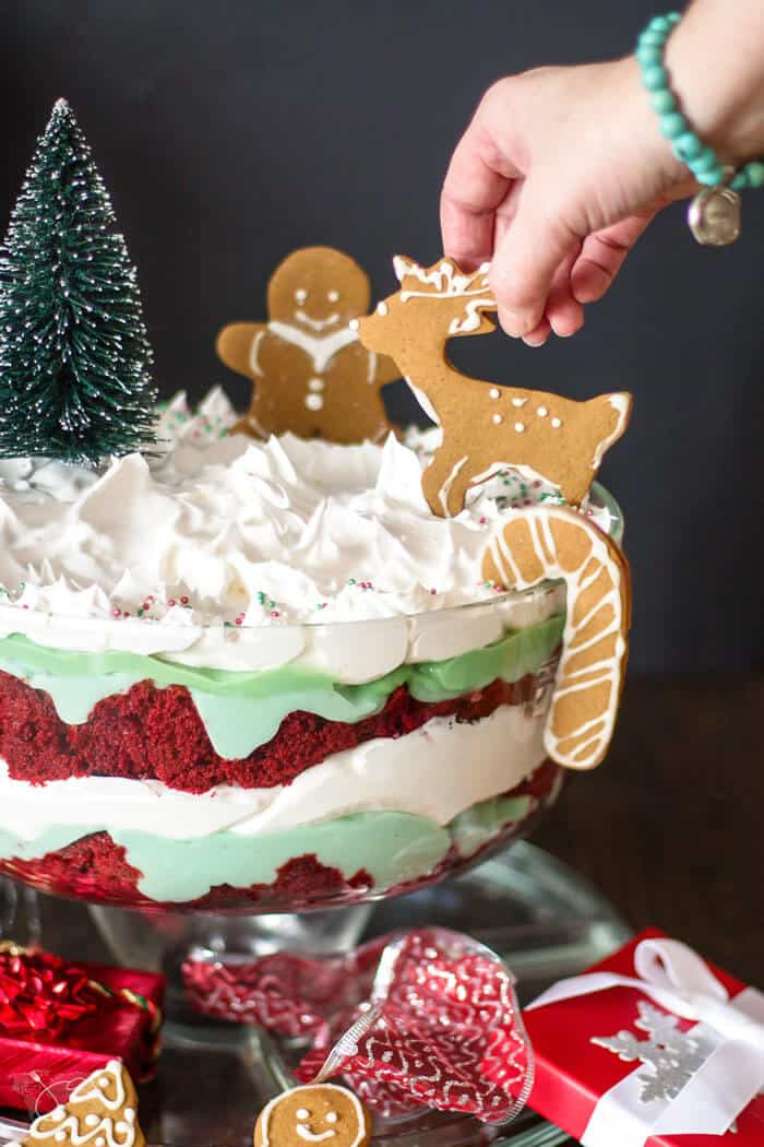 Decorating Christmas trifle with gingerbread cookies
