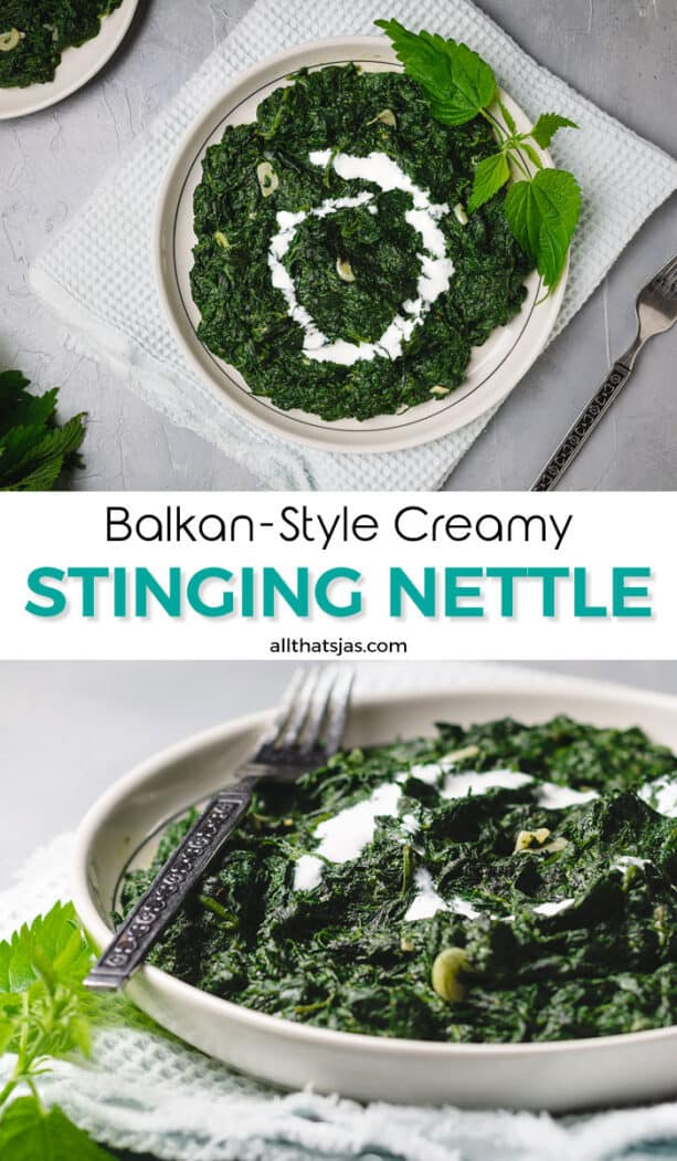 Two photo image of stinging creamy nettle with text overlay in the middle.