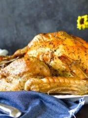 Roasted turkey on a plate.