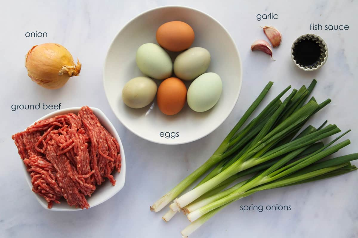 Ingredients for simple beef omelet recipe including ground beef, eggs, and green onions.